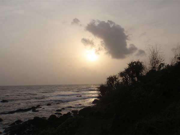 goa India http://masalaherb.com