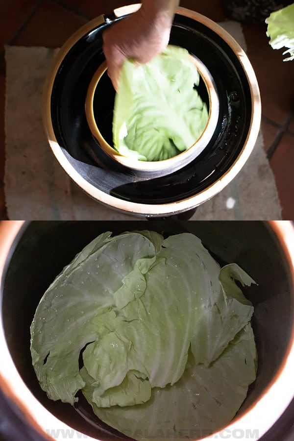 place cabbage leaves in crock pot