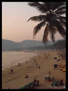 The Big Fish Restaurant review – Palolem beach Goa