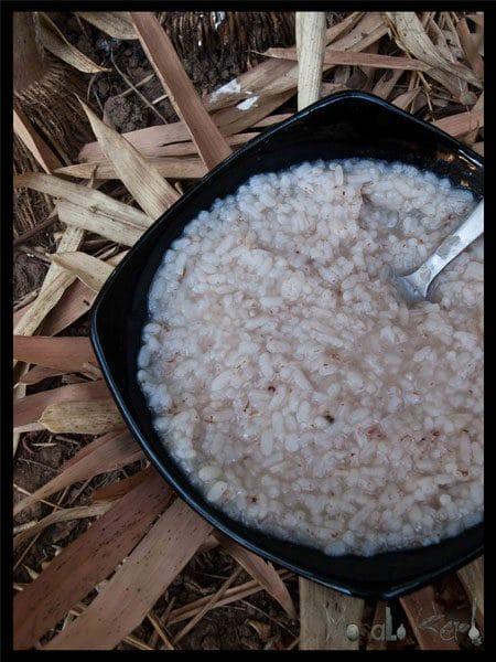 kanji rice (pez) masalaherb.com #stepbystep #recipe @masalaherb