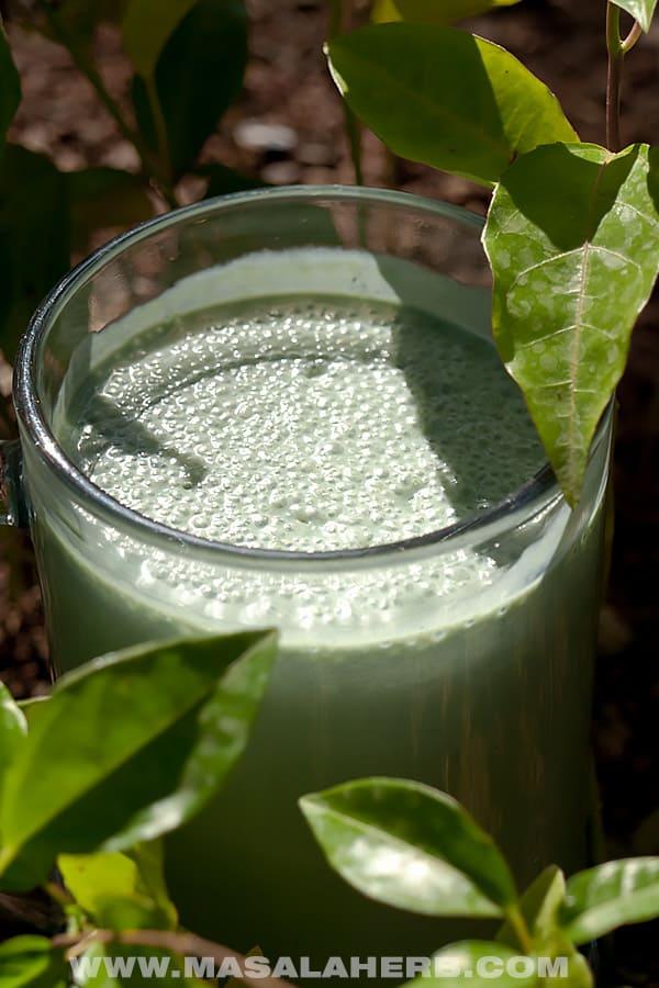 Spirulina Smoothie Recipe with Banana