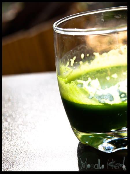 Wheatgrass juice #stepbystep #recipe masalaherb.com
