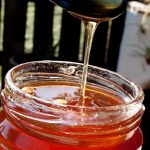 Dandelion Jelly – Dandelion honey – How to cook Dandelion flowers