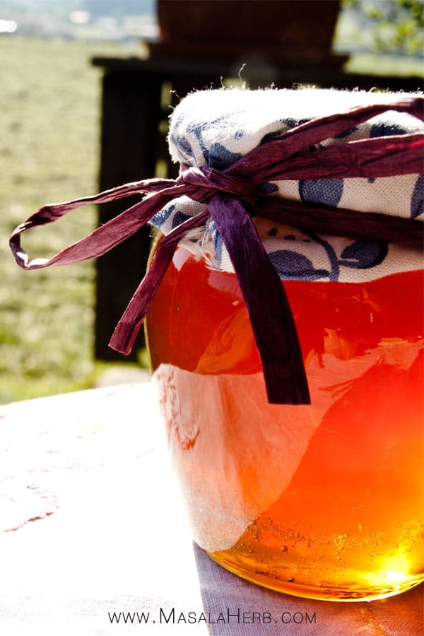 Dandelion Jelly - Dandelion honey - How to cook Dandelion flowers www.masalaherb.com #recipe #flower