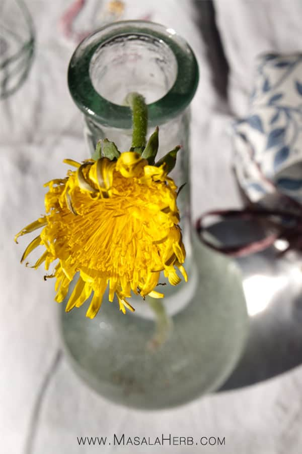 Dandelion Jelly - Dandelion honey - How to cook Dandelion flowers www.masalaherb.com #recipe #flower