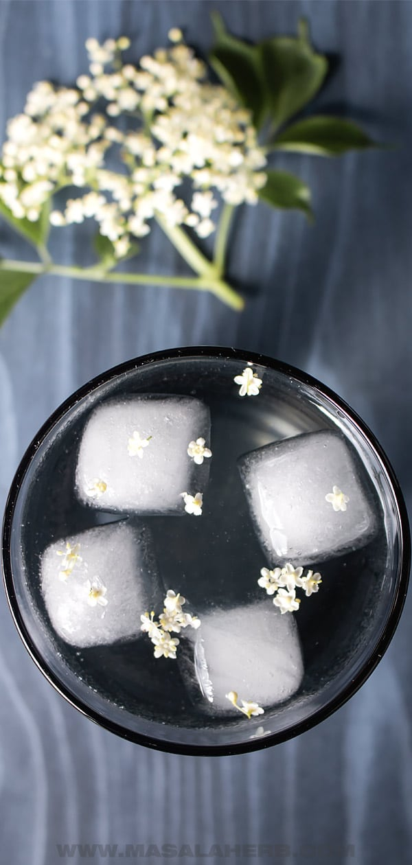 Elderflower Cordial mixed with water