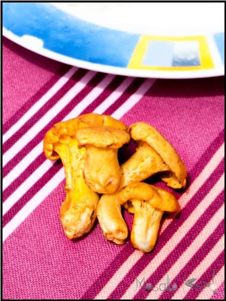 Hunter's schnitzel (Jägerschnitzel) with chanterelle mushrooms #stepbystep #recipe masalaherb.com