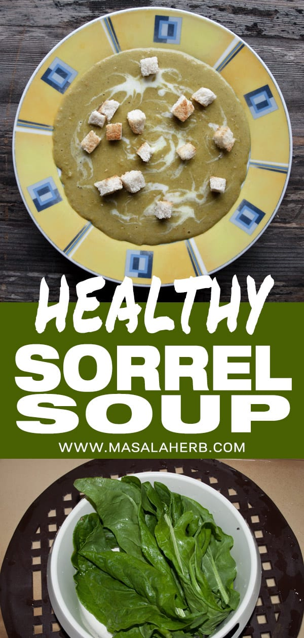 Healthy Sorrel Soup Recipe
