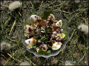Wildflower Salad #stepbystep #recipe masalaherb.com
