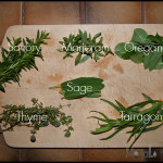 Homemade Herbal Vinegar Dressing [DIY]