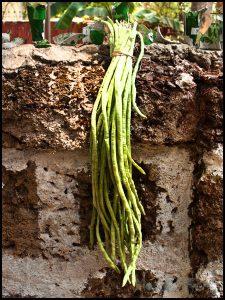 Iriel Bhaji - Yard long beans #stepbystep #recipe masalaherb.com