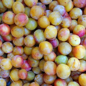 mirabelle fruit