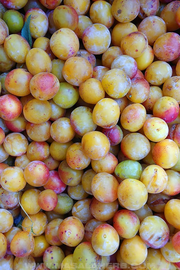 mirabelle plums fresh