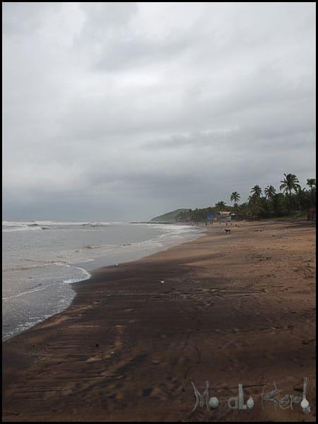 #Goa in September #India #travel masalaherb.com