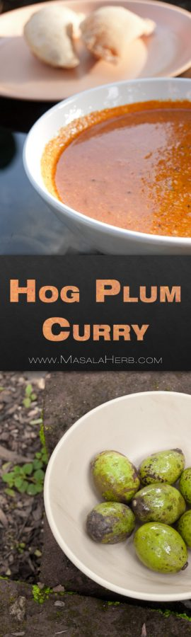 Hog Plum Curry - Goan Ambade Ganesh Chaturthi Festival Curry Recipe - One-pot Vegan without onion easy and quick curry to preapre at home from scratch with curry paste #Indian www.MasalaHerb.com
