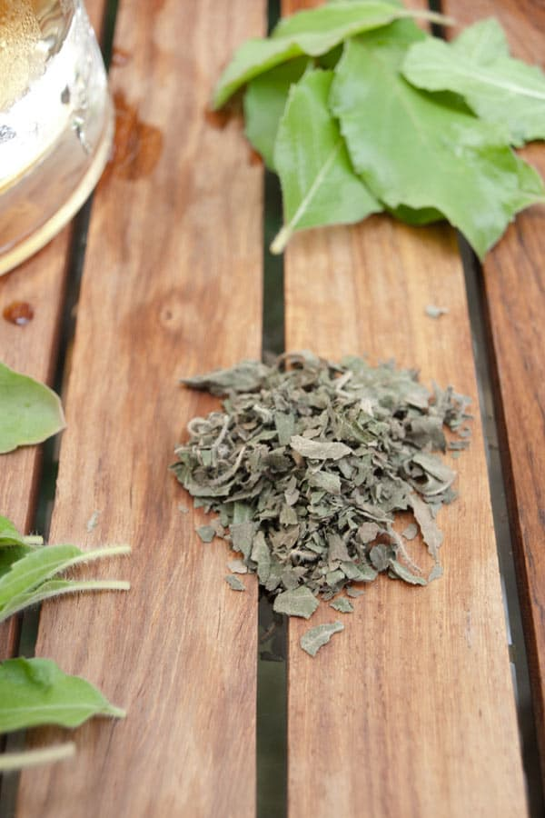 Benefits of Tulsi and Tulsi Ice Tea #drinks #recipe masalaherb.com