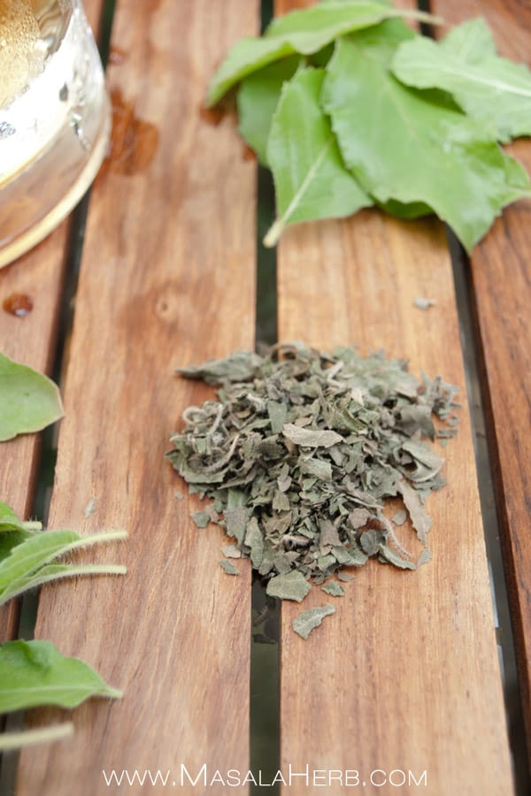 Fresh Tulsi Tea - Holy Basil