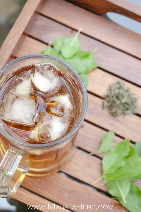 Refreshing Tulsi Ice Tea - Indian Holy Basil Iced Tea to beat the #Indiansummer heat. Make ice tea with the holy basil, tulsi by either using fresh leaves or dried leaves. Tulsi has numberous health benefits which I mentioned in the post. You can even easily plant your own at home! www.Masalaherb.com #healthy #beverage