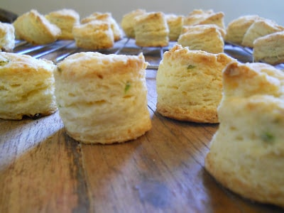 Parmesan Green Onion Mini Scones