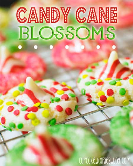 Candy-Cane-Blossoms