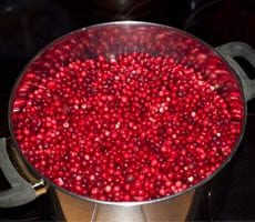 Lingonberry Jam Recipe www.masalaherb.com