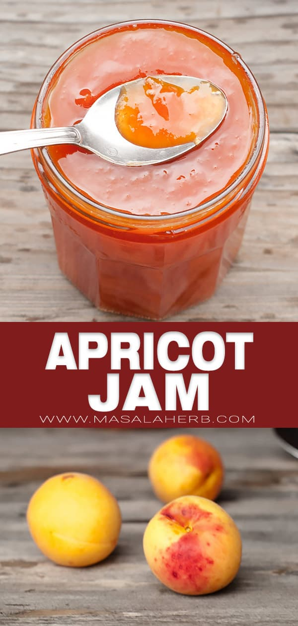 french apricot jam pin