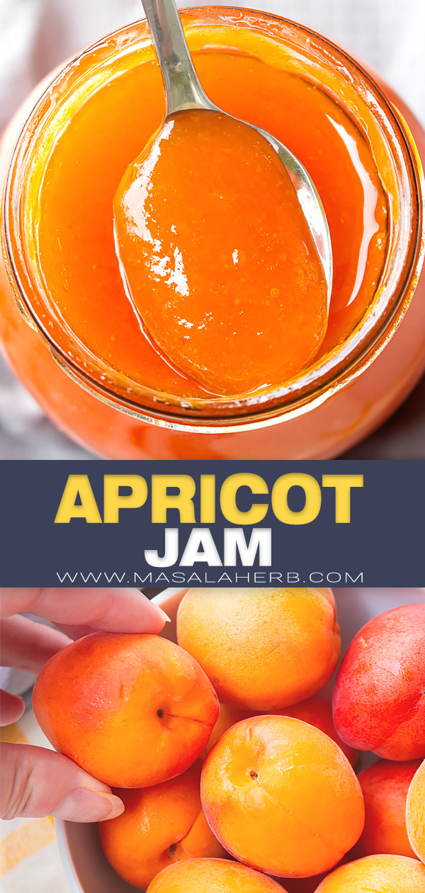 French Apricot Jam pin image