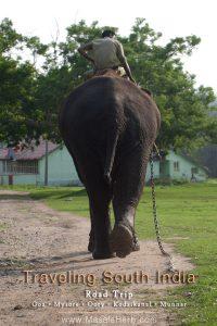 Traveling South India – Road Trip Goa Mysore Ooty Kodaikanal Munnar