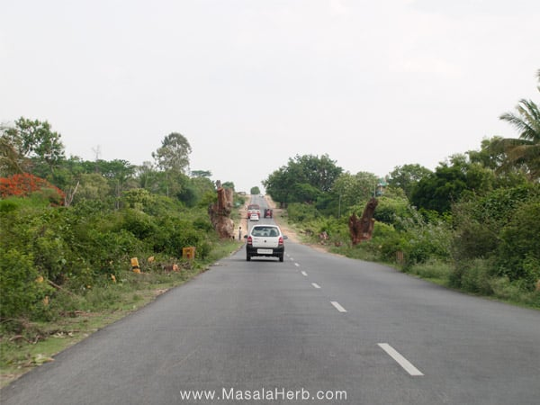 Traveling South India www.masalaherb.com Tamil Nadu roads India
