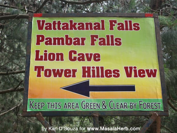 kodaikanal tamil nadu, vattakanal falls, pambar falls, lion cave, tower hill view south india www.masalaherb.com