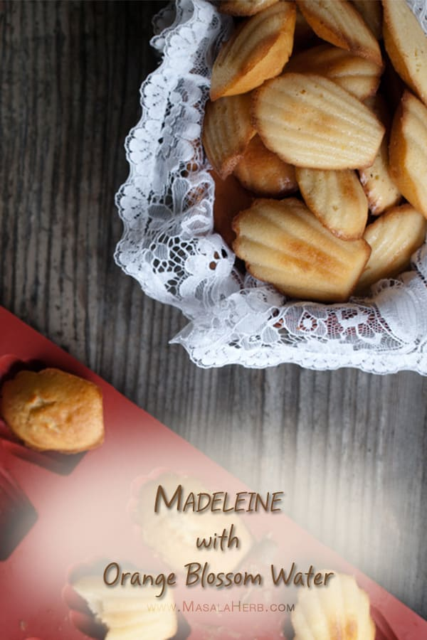 soft warm and moist Madeleine Recipe with Orange blossom water - Learn how to make Madeleines www.masalaherb.com