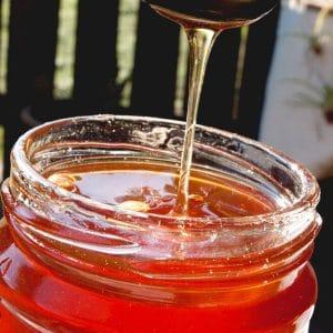 Dandelion Jelly - Dandelion honey