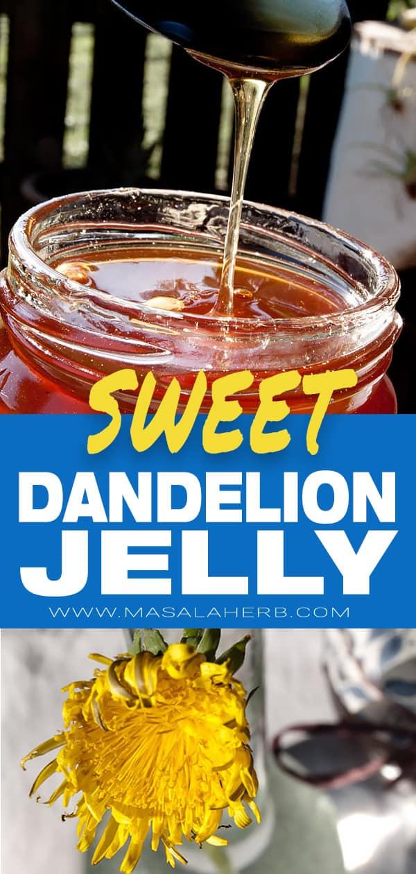Dandelion Jelly - Dandelion honey - How to cook Dandelion flowers