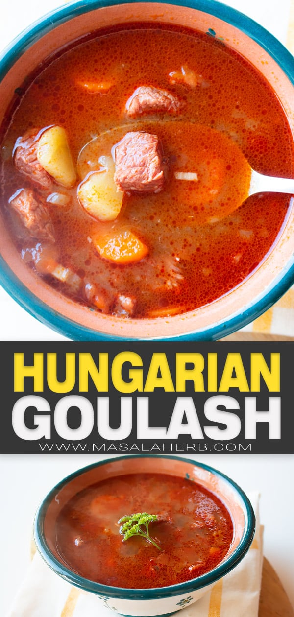 hungarian goulash stew pin image