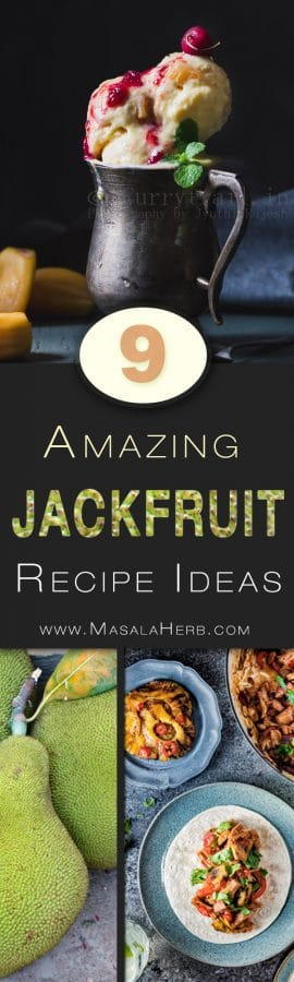 9 amazing Vegetarian Jackfruit Recipes & Ideas - Sweet & Savory Jackfruit Eats to discover! www.MasalaHerb.com collection roundup