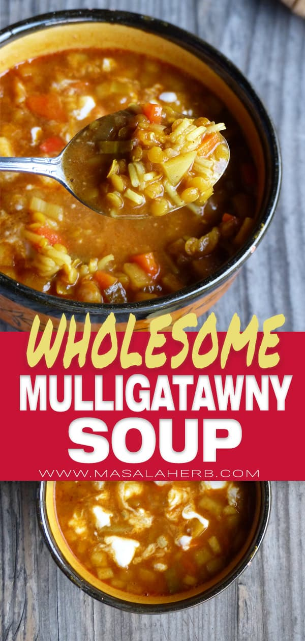 Mulligatawny Soup pin