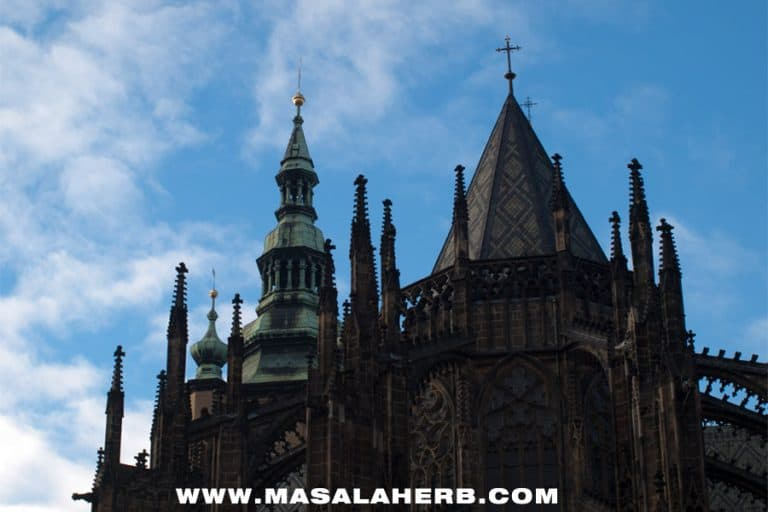 How to spend 3 Days in Prague - Travel Guide for the Czech Capital [Itinerary] TRaveling in East europe on our roadtrip we passed by Prague. I picked out the best sights for you to discover in 3 days! www.MasalaHerb.com #travel #tips #prague #guide