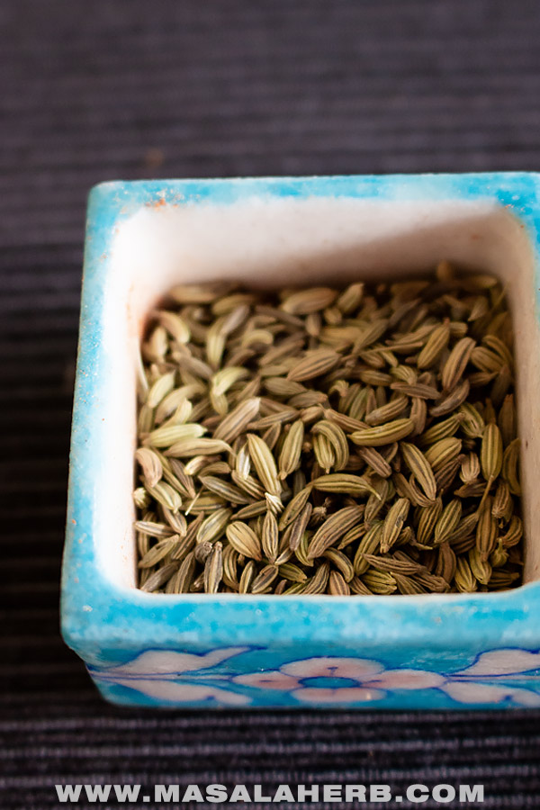 Fennel Seeds - Chinese Five Spice Powder