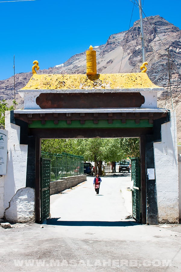 Tabo Monastery in Spiti Himachal Pradesh - Ancient Buddhist Temple Himalayas India
