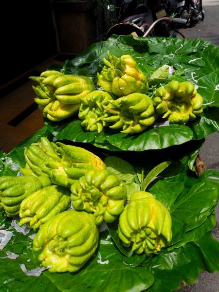 Buddha's claws/hands - Tropical Fruits you didn't know existed! [List and pictures]