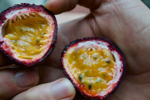 Maracuja - Tropical Fruits you didn't know existed! [List and pictures]