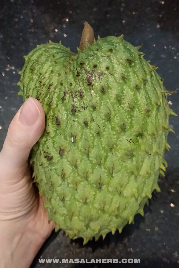 Fresh Soursop Juice [Guanabana fruit]