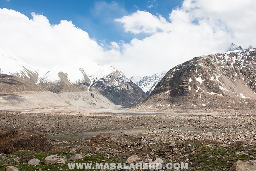 The Himalayas: Kunzum, a road trip of a lifetime! [India]