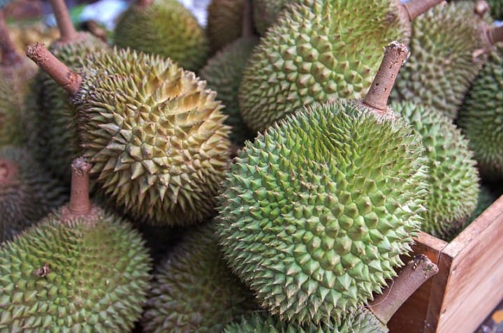 Durian - Tropical Fruits you didn't know existed! [List and pictures]