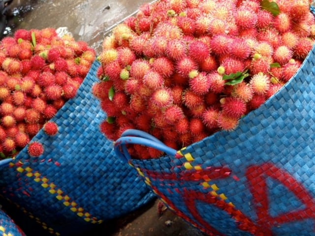 Rambutan - Tropical Fruits you didn't know existed! [List and pictures]