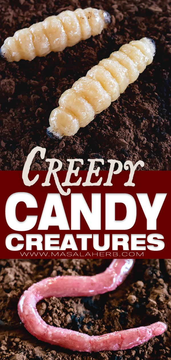 Creepy Halloween Candy Creatures with Marzipan