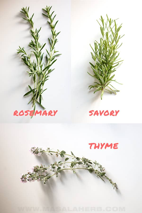 fresh herbs - savory vs rosemary vs thyme