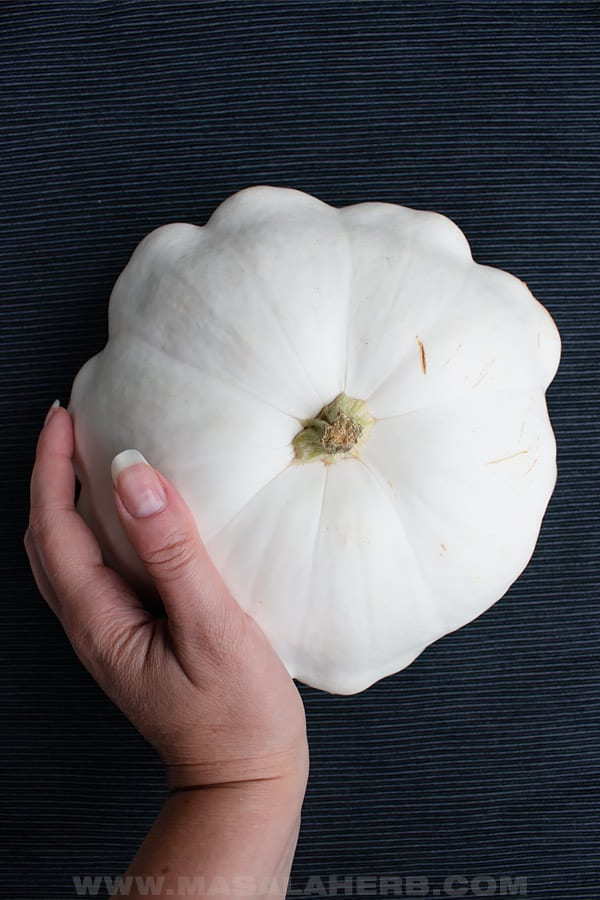 Garden large white patty pan squash (sunburst squash, button squash)
