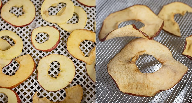 dehydrate apple slices