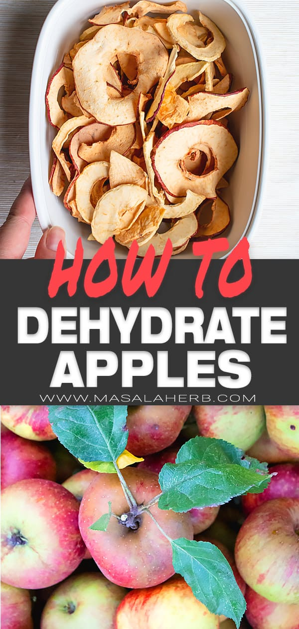 Guide to Dehydrating Apples